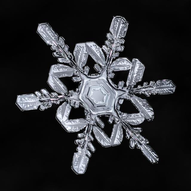 <p>Komarechka has had a lifelong fascination with all things macro — and especially snowflakes. (Photo: Don Komarechka/Caters News) </p>