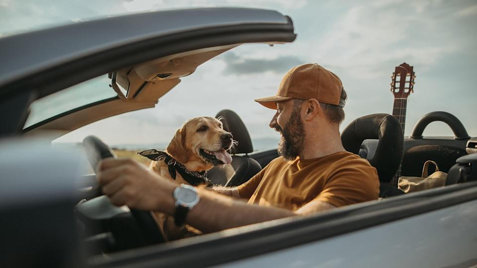 Photo of mature man traveling with his dog in a convertible.