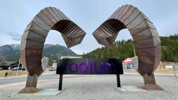 Radium's new piece of public art is meant to represent the 140 bighorn sheep that call the B.C. mountain village home.