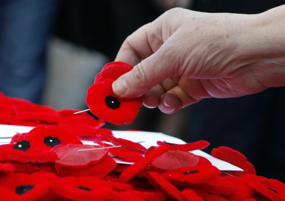 Poppies are placed on the Tomb of the Unknown Soldier following a Remembrance Day ceremony at the National War Memorial in Ottawa November 11, 2010.     REUTERS/Blair Gable     (CANADA - Tags: POLITICS MILITARY)