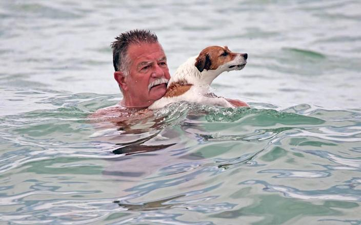Larry Abascar and his dog Sweet Pea cooled off June 21, 2021 off Howrover Beach in Miami-Dade, Florida. Many people trying to get rid of the heat and humidity went to the beach for sand and surfing.