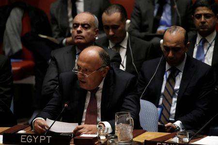 Egypt Foreign Minister Calls Libyan Militant Camps a Direct Threat
