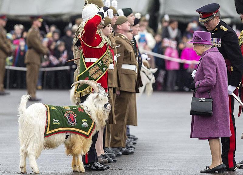 Queen Elizabeth met the Royal Welsh Regiment – and a goat – on St David's Day last month