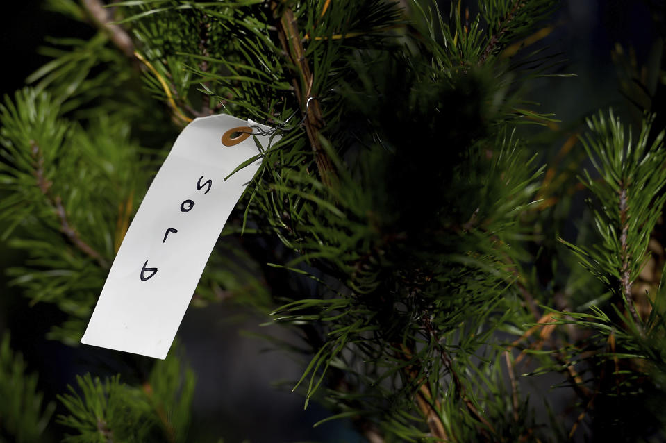 "A detailed view of a ""sold"" tag on a Virginia pine tree at Frank Pichel's tree lot, Sunday, Dec. 6, 2020, in Richmond, Va. A Virginia man has found a way to use Charlie Brown-style Christmas trees to benefit a middle school that provides scholarships for students from an impoverished area. (AP Photo/Will Newton)"