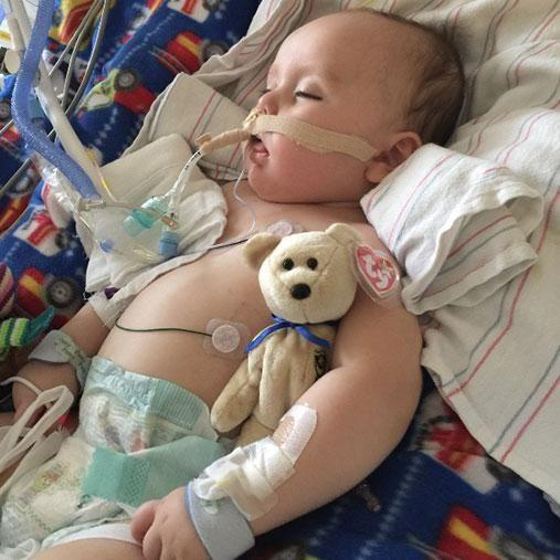 After days of uncertainty, Cole was diagnosed with Botulism. Photo: gofundme