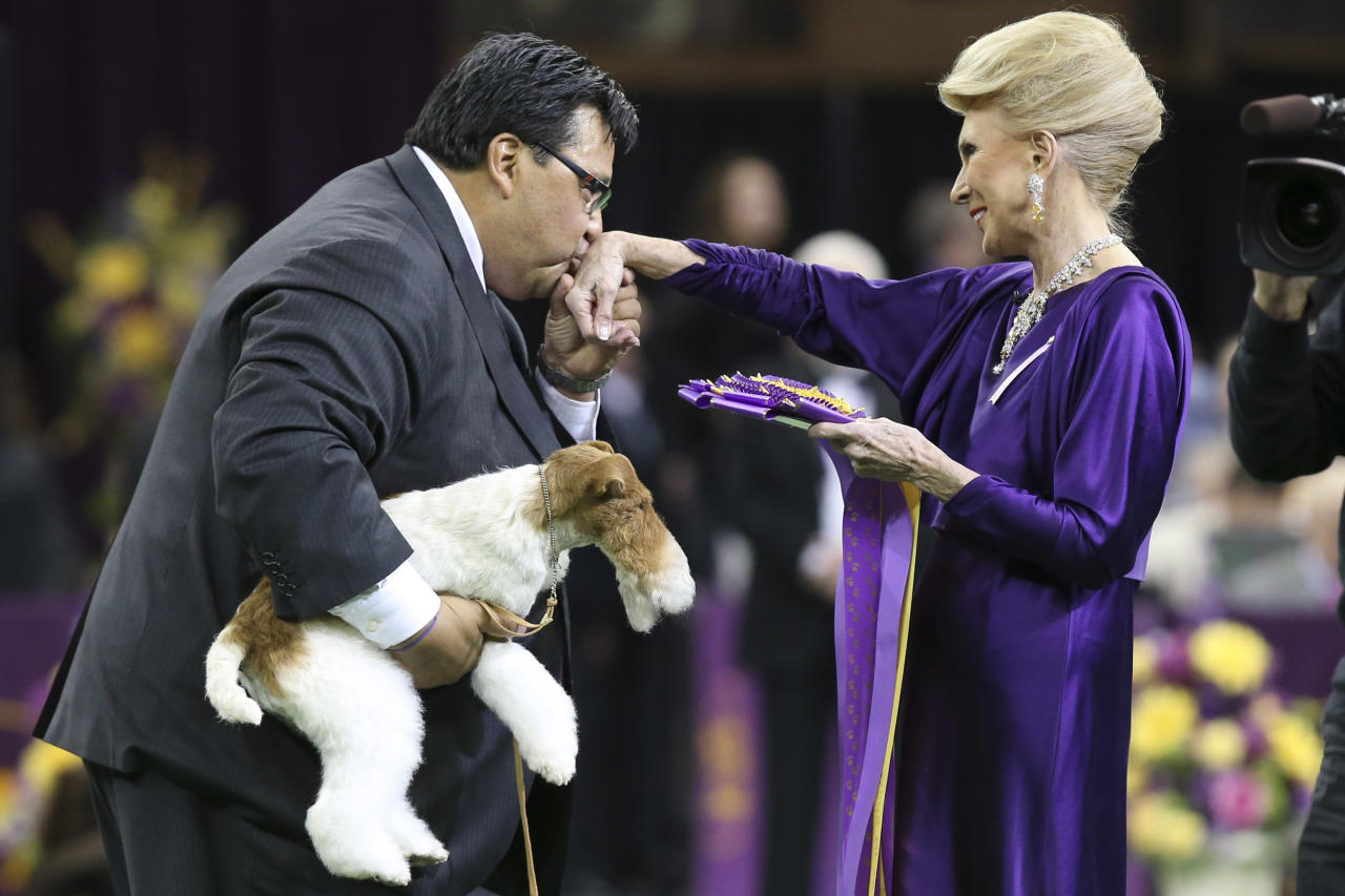 Sky, a wire fox terrier, is held as his handler Gabriel Rangel kisses the hand of judge Betty Regina Leininger after winning best of show during the Westminster Kennel Club dog show, Tuesday, Feb. 11, 2014, in New York. (AP Photo/John Minchillo)