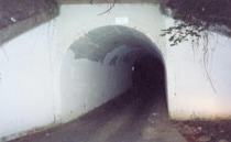"""<p>The legend of <a href=""""https://www.insidenova.com/headlines/bunnyman-bridge-the-scary-truth-behind-an-infamous-urban-legend/article_a27c7000-dca4-11e8-ad84-af51d935cbcb.html"""" rel=""""nofollow noopener"""" target=""""_blank"""" data-ylk=""""slk:Bunny Man"""" class=""""link rapid-noclick-resp"""">Bunny Man</a> is ripe for a horror movie retelling. There are a few different stories that surround the Bunny Man lore, but they all have one thing in common: Bunny Man is out for blood. </p><p>Whether he's an escaped lunatic dressed in a bunny costume or he's a vengeful ghost, the story of the murderous Bunny Man is equally as creepy. The Bunny Man Bridge, located in the woods of Fairfax County, is where the infamous killer supposedly hunts. The site has been featured in several shows, including <em>Scariest Places on Earth</em> on Fox.</p>"""