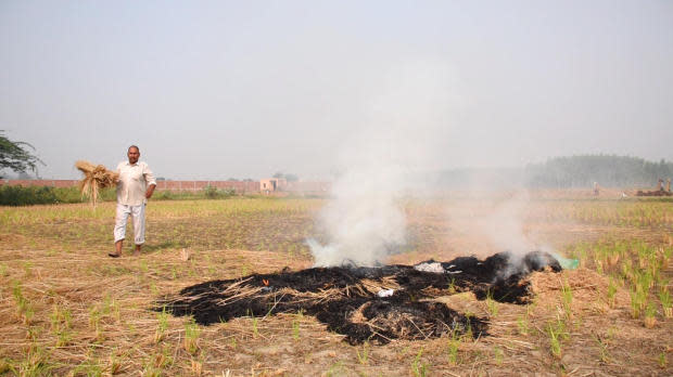 Rohtash, a farmer who didn't want to give his full name, burns his crop stubble in Haryana, India.