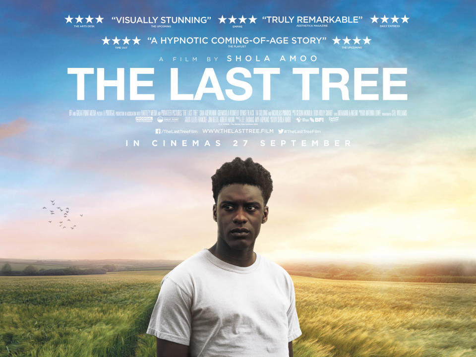 The poster for The Last Tree (Picturehouse)