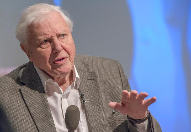 Sir David Attenborough addresses the UK Climate Assembly: Getty Images