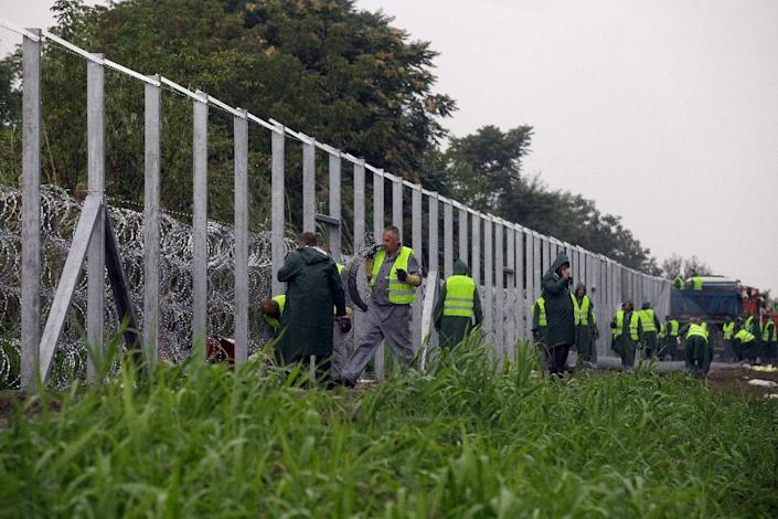 Hungarian prisoners build a new section of fence along the Hungarian-Serbian border near Roszke, on September 10, 2015 (AFP Photo/Peter Kohalmi)