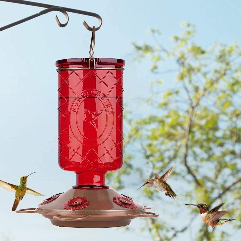 <p>If you live in an area where there are a good amount of hummingbirds, this <span>Bolite Glass Hummingbird Feeder, 5 Feeding Stations, 22 Ounces</span> ($20) will bring them to your doorstep.</p>