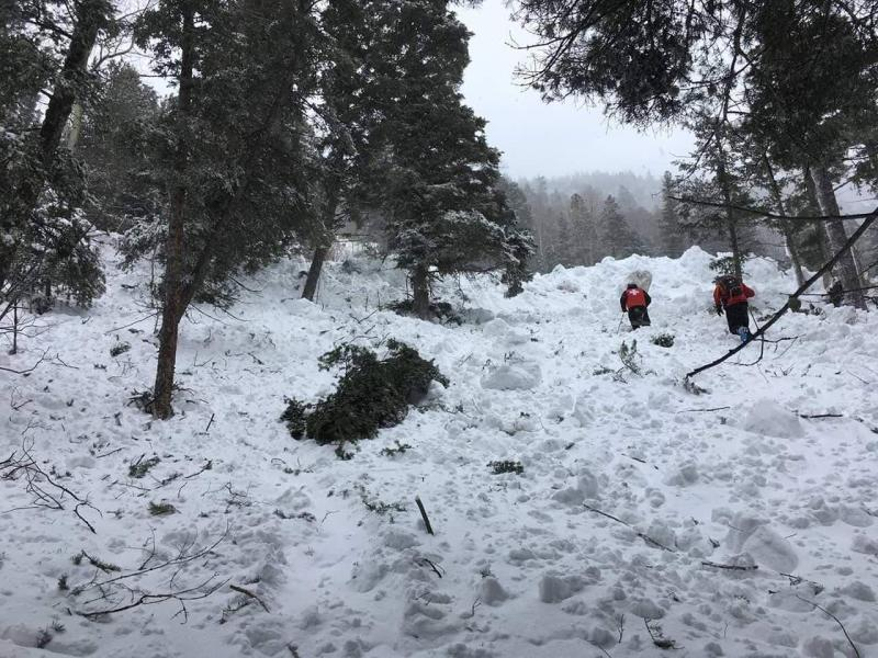 Rescue workers trudging through the avalanche's path of destruction. (Courtesy of Christof Brownell)