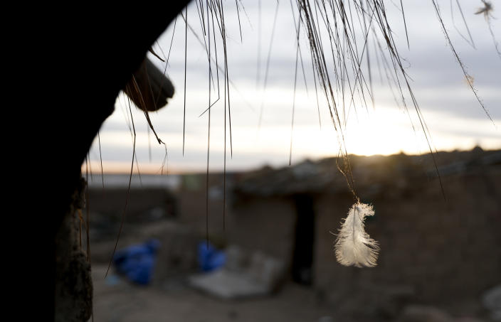 A feather is caught in a blade of straw in the entrance of a home in the Urus del Lago Poopo Indigenous community, in Punaca, Bolivia, Sunday, May 23, 2021. To save their identities, the Uru communities are trying to revive their native language — or at least its closest sibling. The last native speakers gradually died and younger generations grew up schooled in Spanish and working in other, more common Indigenous languages, Aymara and Quechua. (AP Photo/Juan Karita)