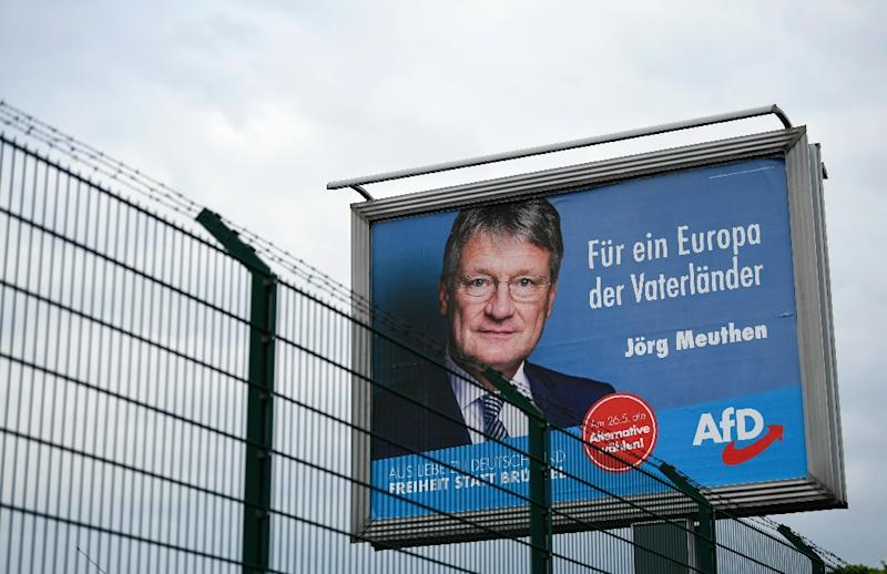 Alternative for Germany (AfD) leader Joerg Meuthen says the party cannot ignore environmental concerns of voters before the European elections (AFP Photo/INA FASSBENDER)