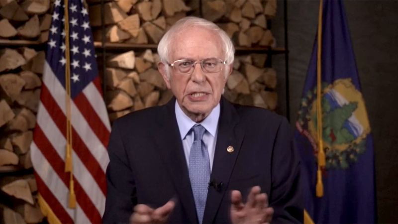 Sen. Bernie Sanders speaks during the virtual Democratic National Convention on August 17, 2020. (via Reuters TV)