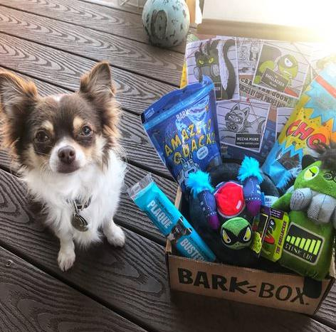 Save nearly 50 percent on BarkBox, today only! (Photo: Amazon)