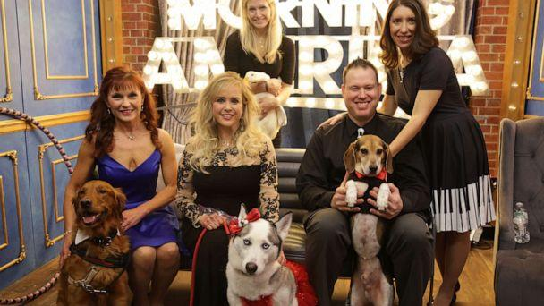 PHOTO: Pet nominees and their owners on 'GMA' for the Pet of the Year Awards. (ABC News)
