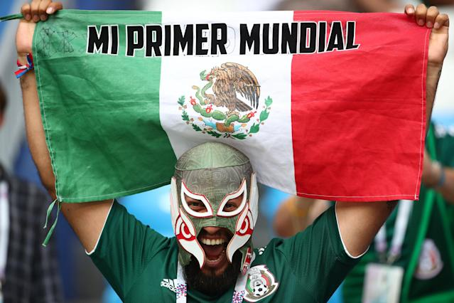 <p>Mexico fan before the match REUTERS/Michael Dalder </p>