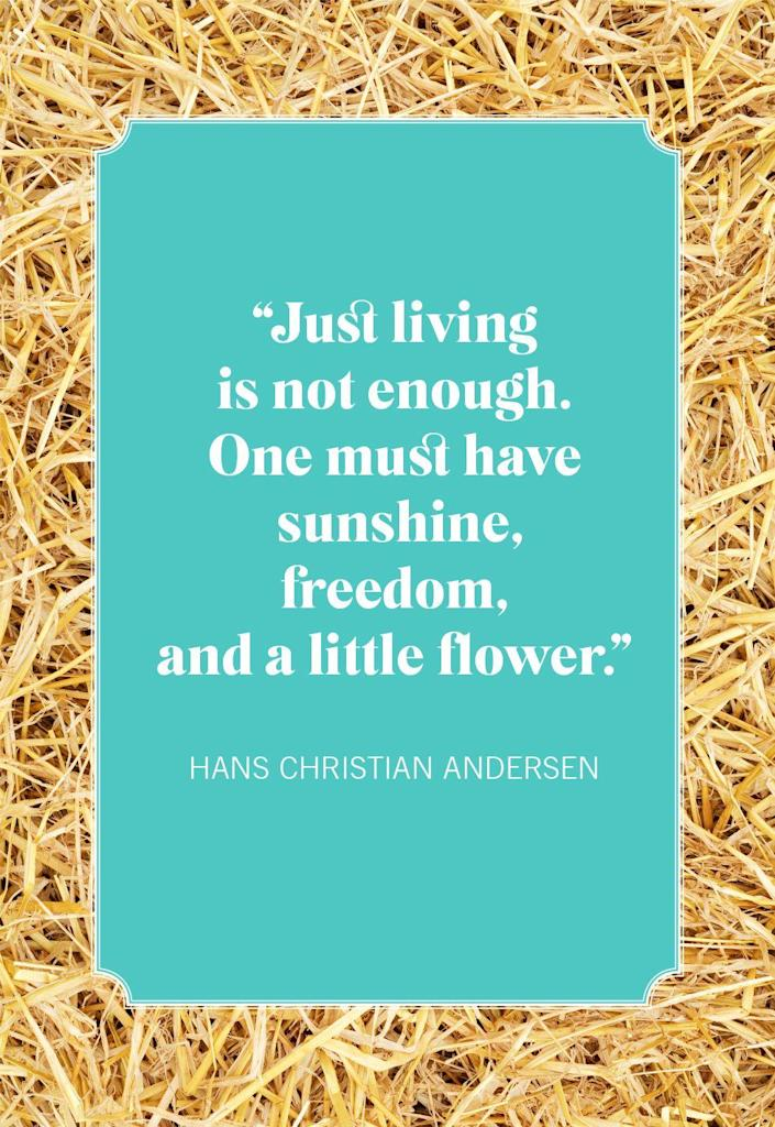 """<p>""""Just living is not enough. One must have sunshine, freedom, and a little flower.""""</p>"""