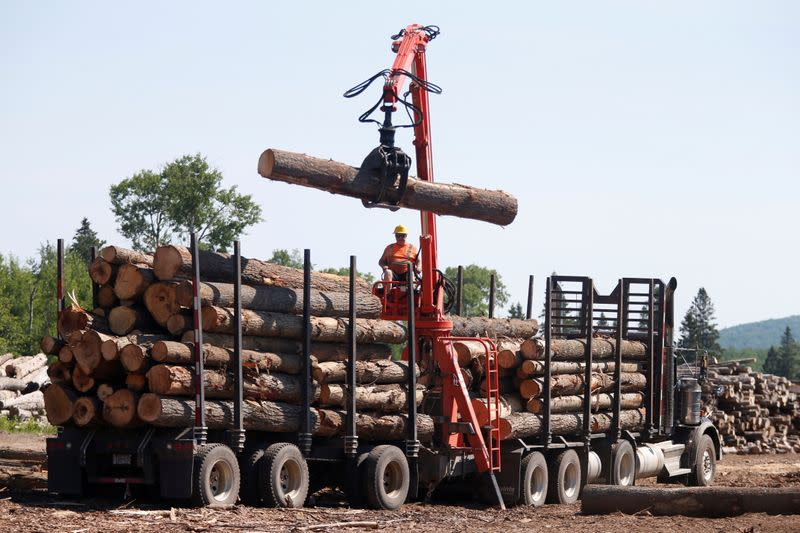 FILE PHOTO: A worker unloads logs at the Murray Brothers Lumber Company in Madawaska