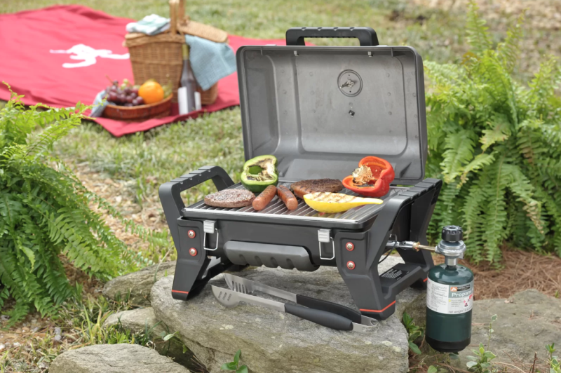 Grill2Go TRU-Infrared Portable 1-Burner Propane Gas Grill (Photo: Wayfair)