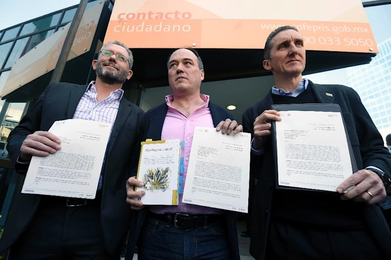 Members of the Mexican Society of Responsible and Tolerant Self-Consumption, (L to R) Pablo Girault, Armando Santacruz and Juan Francisco Torres Landa pose after receiving legal protection for the recreational use of marijuana, in Mexico City (AFP Photo/Alfredo Estrella)
