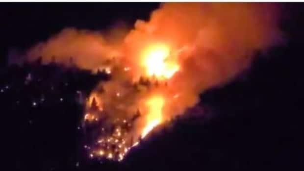 Images from Twitter show a wildfire near Vernon, B.C., that closed Highway 97. (Teresa Deak/Twitter - image credit)
