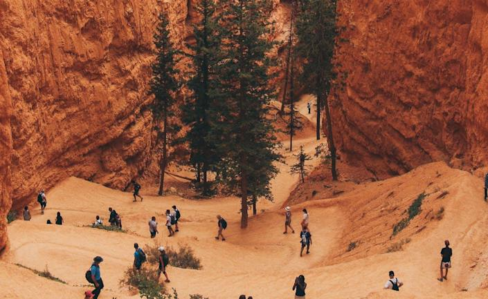 "<span class=""caption"">Utah's Bryce Canyon National Park hosted more than 2.5 million visitors in 2019.</span> <span class=""attribution""><a class=""link rapid-noclick-resp"" href=""https://unsplash.com/photos/gFtJO8ciK90"" rel=""nofollow noopener"" target=""_blank"" data-ylk=""slk:Anqi Lu/Unsplash"">Anqi Lu/Unsplash</a>, <a class=""link rapid-noclick-resp"" href=""http://creativecommons.org/licenses/by/4.0/"" rel=""nofollow noopener"" target=""_blank"" data-ylk=""slk:CC BY"">CC BY</a></span>"