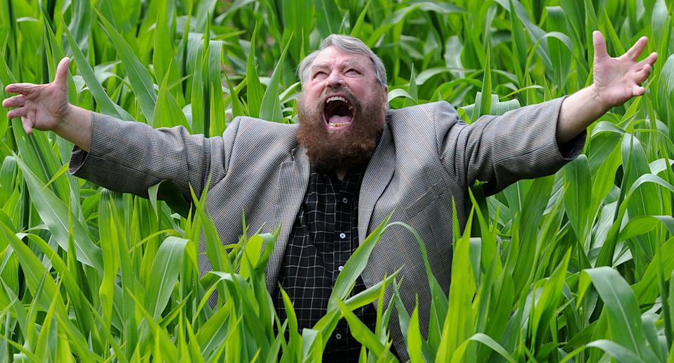 Brian Blessed stands inside farmer Tom Pearcy's Maze on July 11, 2014. (Anna Gowthorpe/Getty Images)