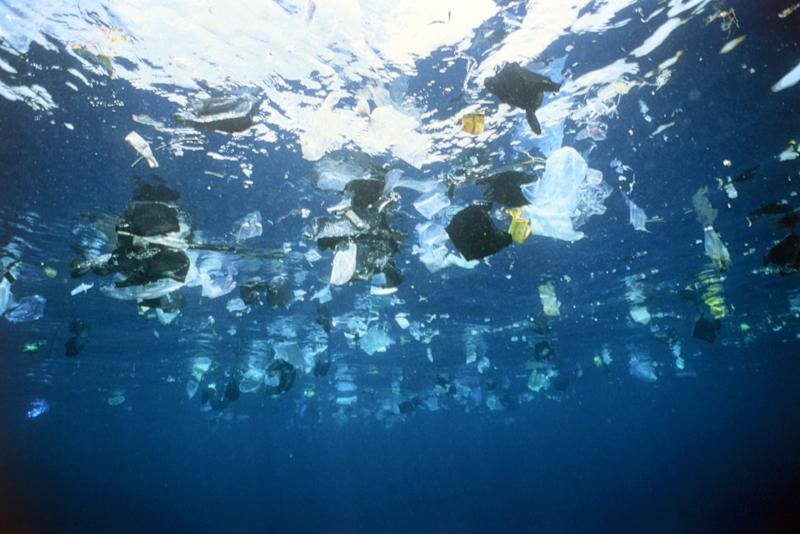 More than 8 million tons of plastic enters the oceans each year. By 2050 it is predicted there will be more plastic than fish in the ocean. (Gary Bell via Getty Images)