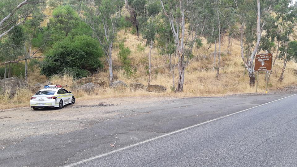 The roadside where the cat was found on at George Road, Millbrook. There is a police car to the left.