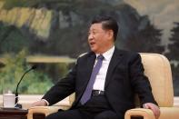 Chinese President Xi jinping speaks during a meeting with Tedros Adhanom, director general of the World Health Organization, at the Great Hall of the People in Beijing
