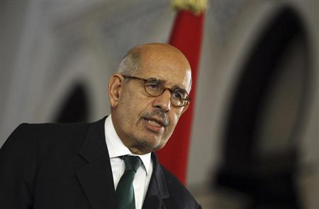 Egypt's interim Vice President Mohamed ElBaradei speaks during a news conference with European Union foreign policy chief Catherine Ashton at El-Thadiya presidential palace in Cairo