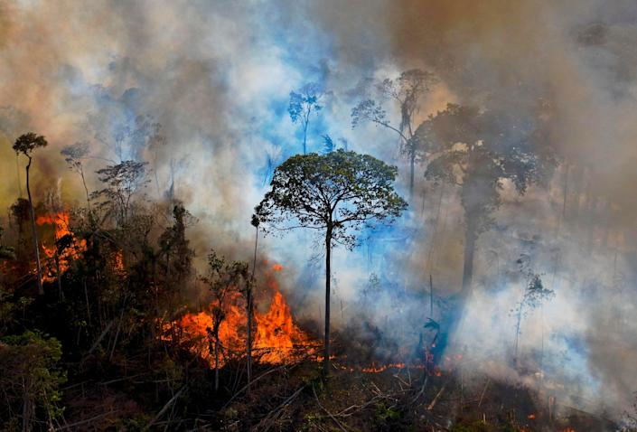 <p>There were a record number of fires in the Amazon last summer</p> (AFP via Getty Images)