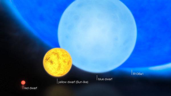 """This artist's impression shows the relative sizes of young stars, from the smallest """"red dwarfs"""", weighing in at about 0.1 solar masses, through low mass """"yellow dwarfs"""" such as the Sun, to massive """"blue dwarf"""" stars weighing eight times more t"""