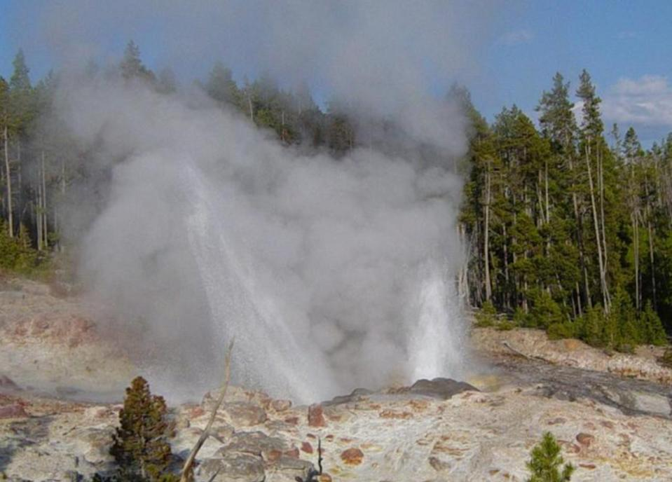 Man fined for trying to fry chicken in Yellowstone hot spring