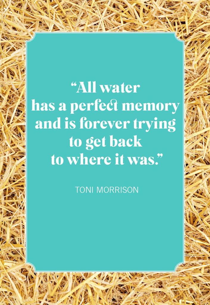 """<p>""""All water has a perfect memory and is forever trying to get back to where it was.""""</p>"""