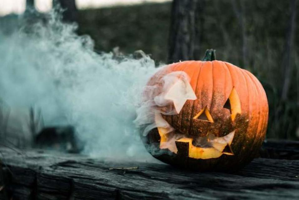 Millions of tonnes of pumpkins wasted annually: Here's how to reduce waste