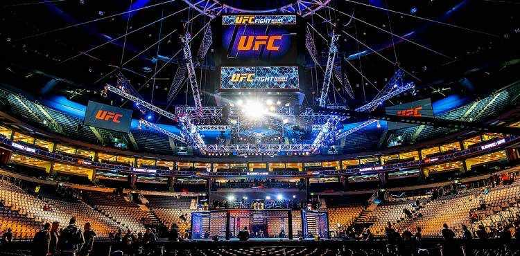 Image result for UFC arena
