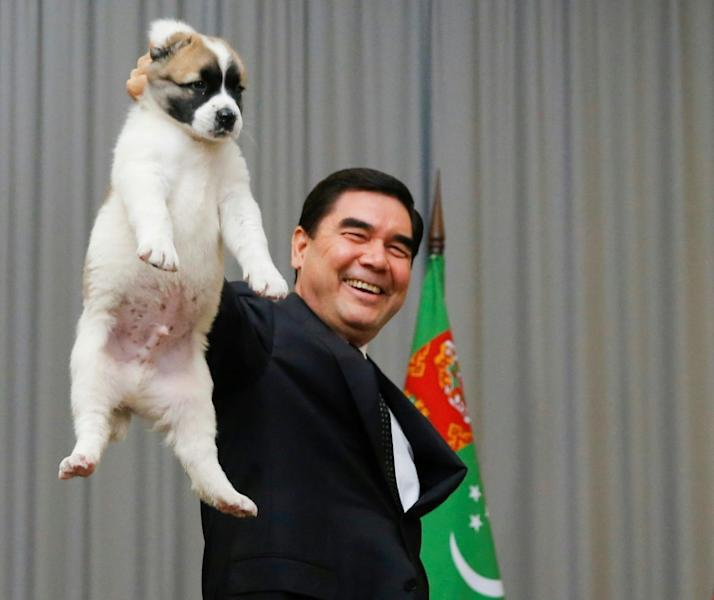 The breed's status in Turkmenistan is growing thanks to in large part to the efforts of President Gurbanguly Berdimuhamedov