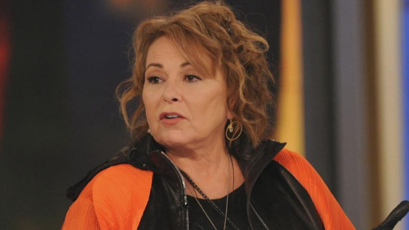 Roseanne Barr Says She's Been Offered 'So Many&apos Projects Since Being Fired From 'Roseanne&apos Reboot