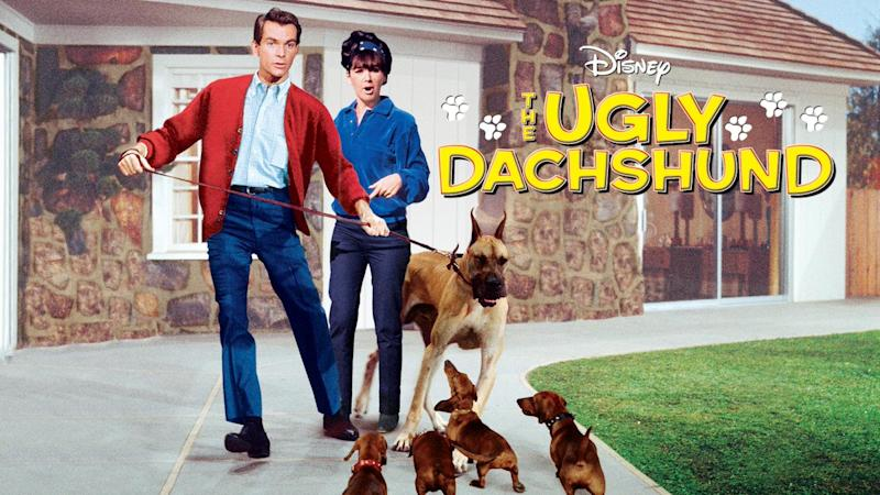 The Ugly Dachshund starring Dean Jones and Suzanne Pleshette. (Photo: Disney+)