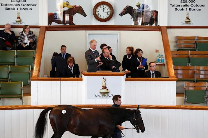 The racing industry especially the multi-million pound bloodstock sales could be especially affected if the tri-partite agreement is a casualty of Brexit (AFP Photo/Adrian DENNIS)