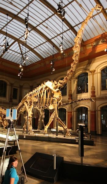 Researchers using a laser to create a 3D copy of the Berlin Brachiosaurus skeleton.