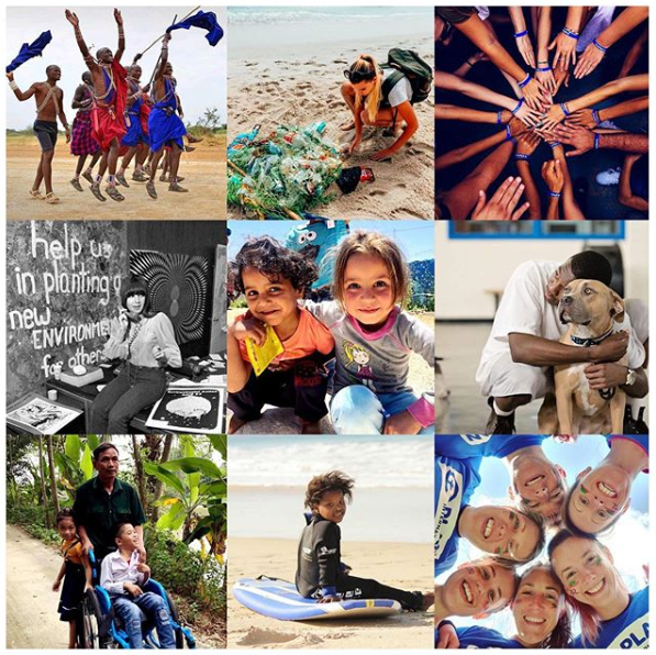 A collage of the 15 charitable accounts Prince Harry and Meghan Markle are following on Instagram.