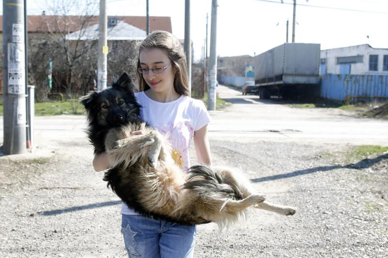 Ana-Maria Ciulcu takes a dog from a street in Bucharest