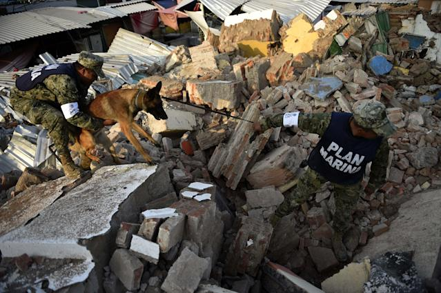 <p>Soldiers with specially trained dogs search for survivors amid the ruins of buildings knocked down Thursday night by a 8.1-magnitude quake, in Juchitan de Zaragoza, Mexico, on Sept. 9, 2017. (Photo: Pedro Pardo/AFP/Getty Images) </p>