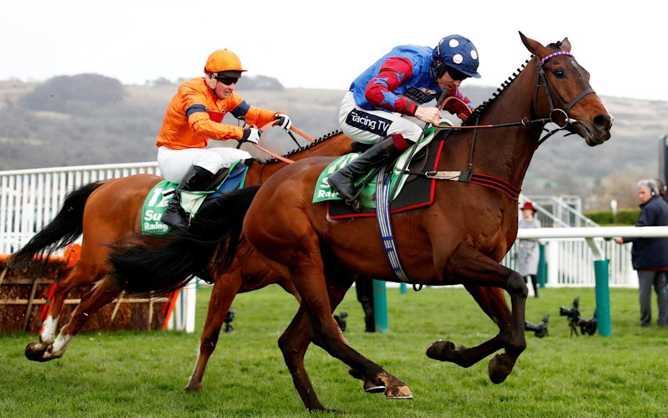 Paisley Park won the Stayers Hurdle at Cheltenham in 2019 - REUTERS