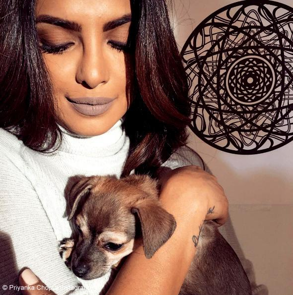 <p>Should I take her home or not? Priyanka shared this adorable photo expressing her wish to take Diana home.</p>
